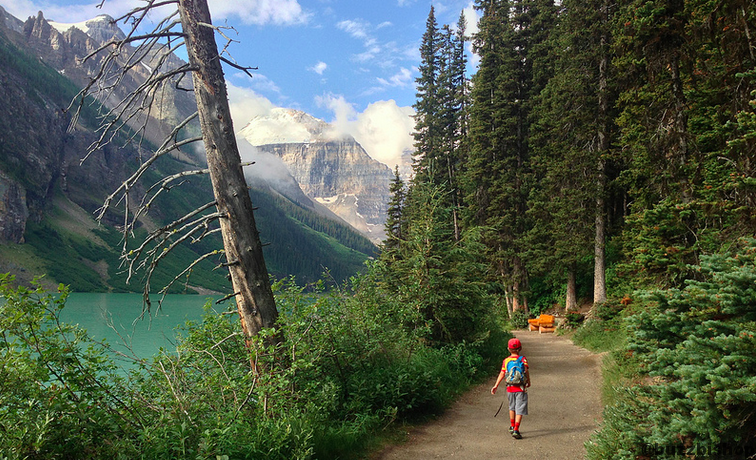 plain of six glaciers hike lake louise