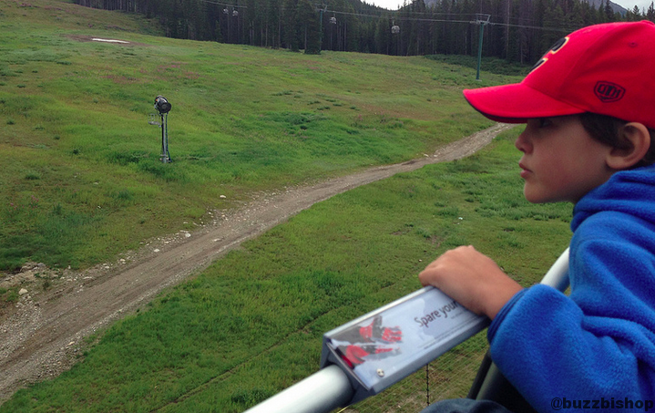 grizzly bear hunting from lake louise gondola