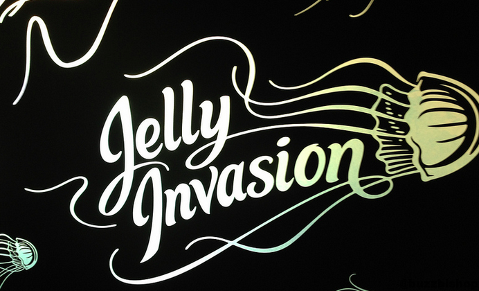 jelly invasion vancouver aquarium