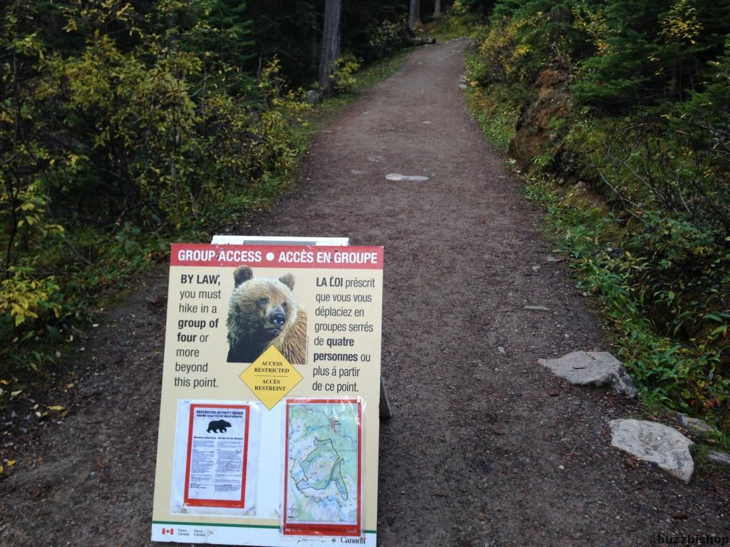 bear warning at larch valley