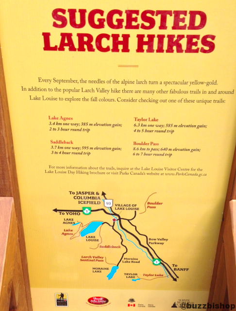 8 Larch Hikes To Avoid The Crowds