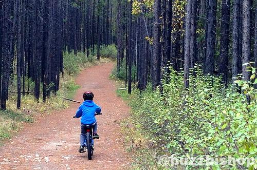 Mountain Bike Trail For Kids: Troll Falls In K Country