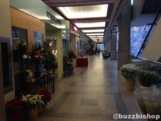 Empty Calgary Mall