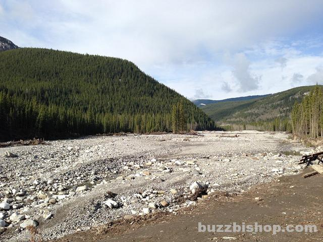 Elbow Falls Picnic Area