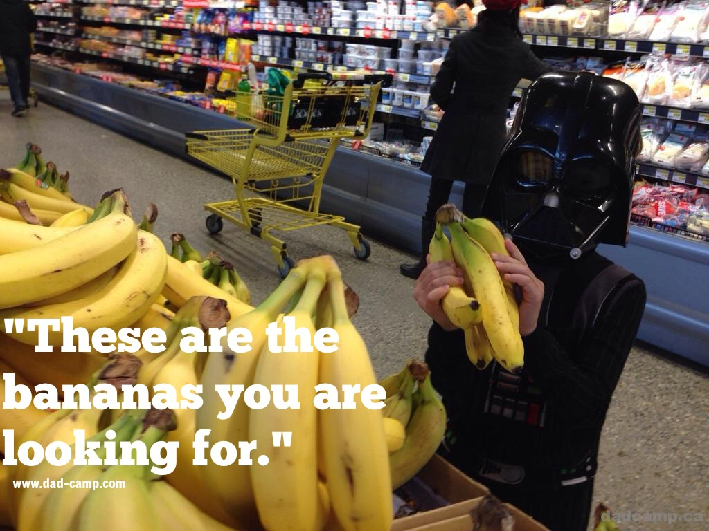 These are the bananas you are looking for