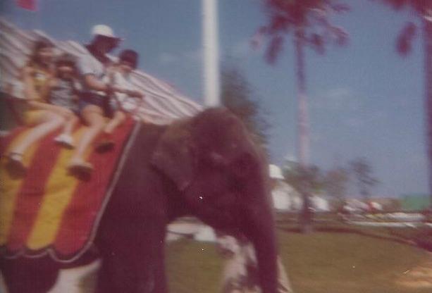me n elephant
