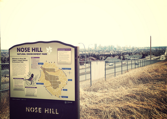 Nose Hill off 14th St NW