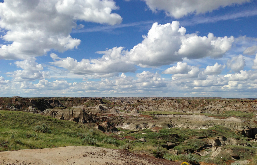 Dinosaur Provincial Park - Buzz Bishop