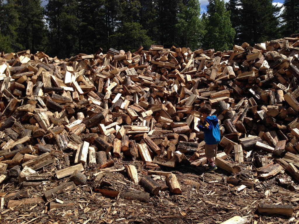 Firewood At Tunnel Mountain Camgpground