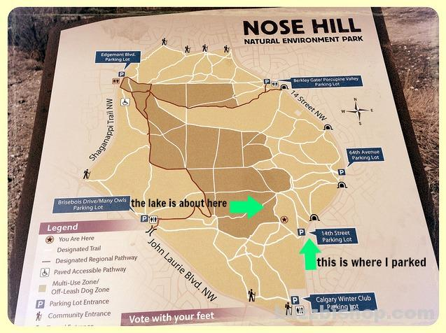 Nose Hill Park Map