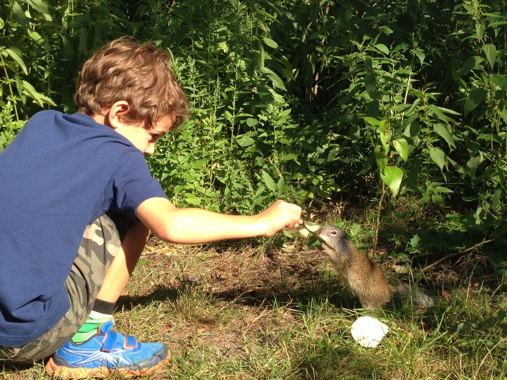 Zacharie feeding ground squirrels at Rochon Sands - DadCAMP