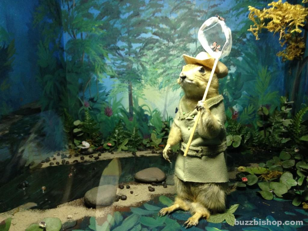 Gopher Diorama at World Famous Gopher Hole Museum