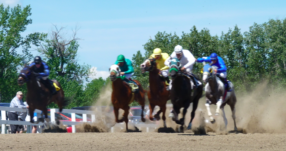 Horse Track Calgary