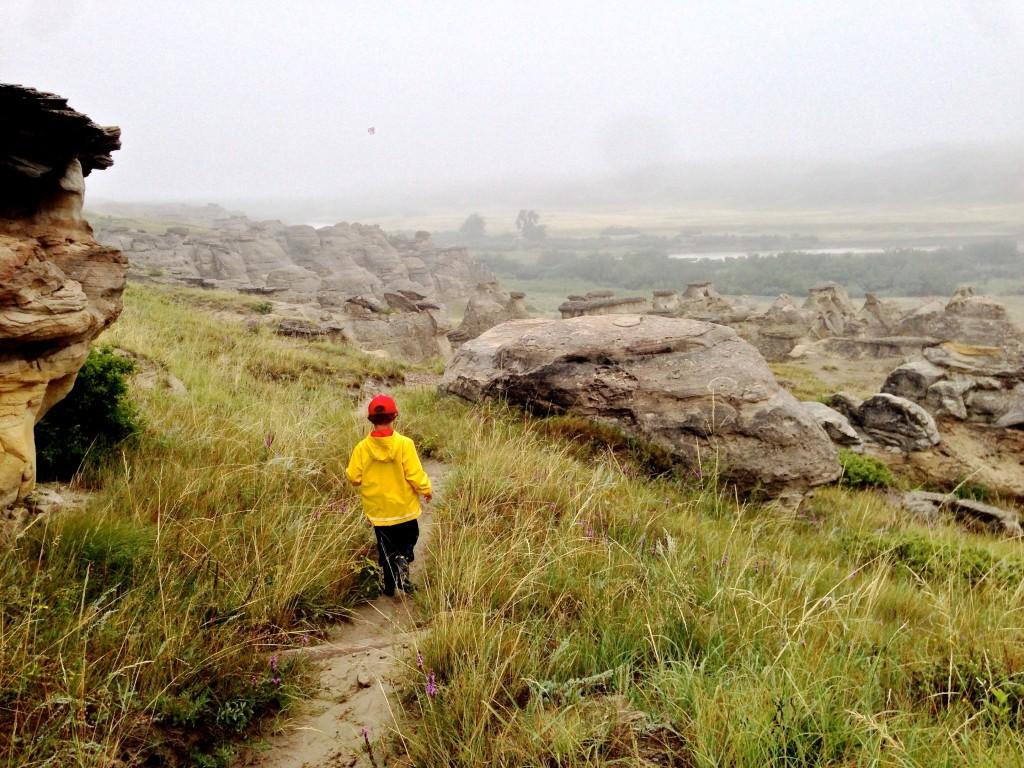 Writing On Stone 2014-08 - 12