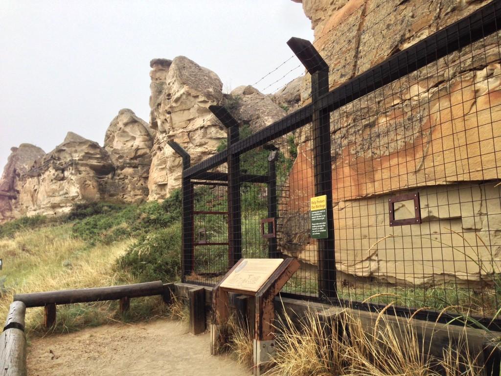 Writing On Stone 2014-08 - 24