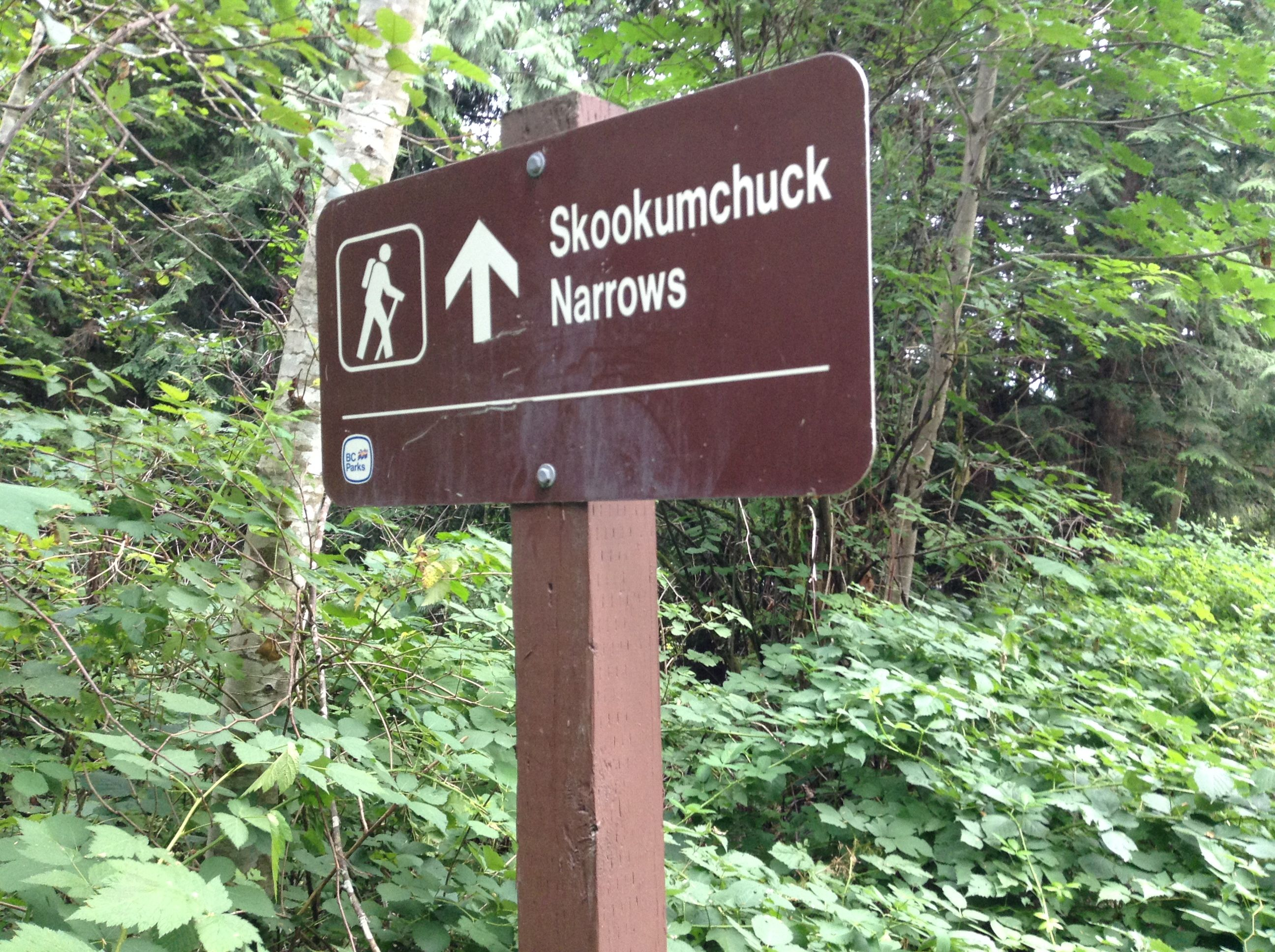 Hike To Skookumchuck Narrows