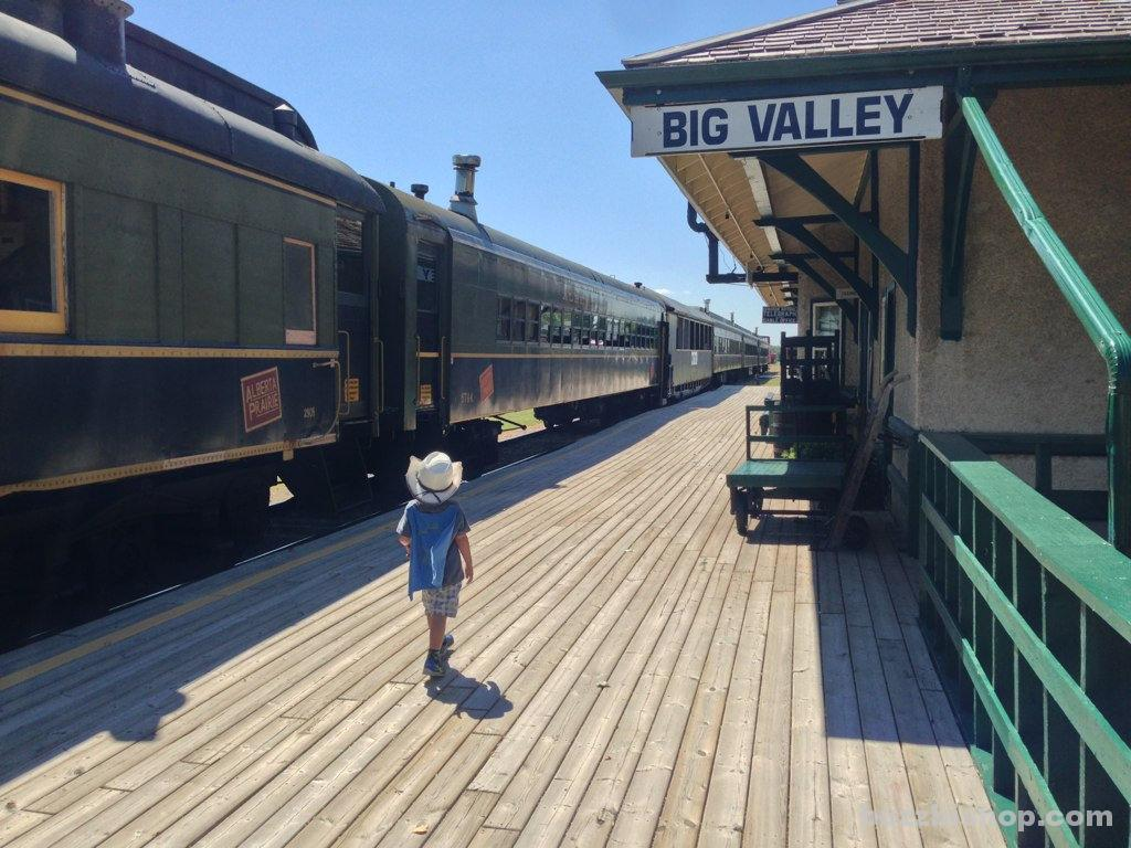 Train Station In Big Valley