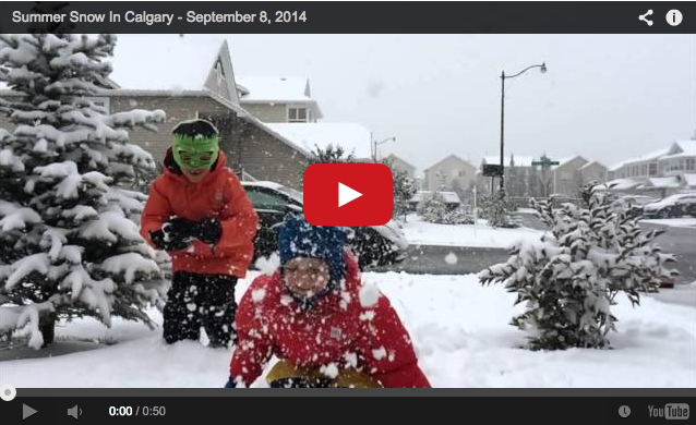 Summer Snow In Calgary - Buzz Bishop