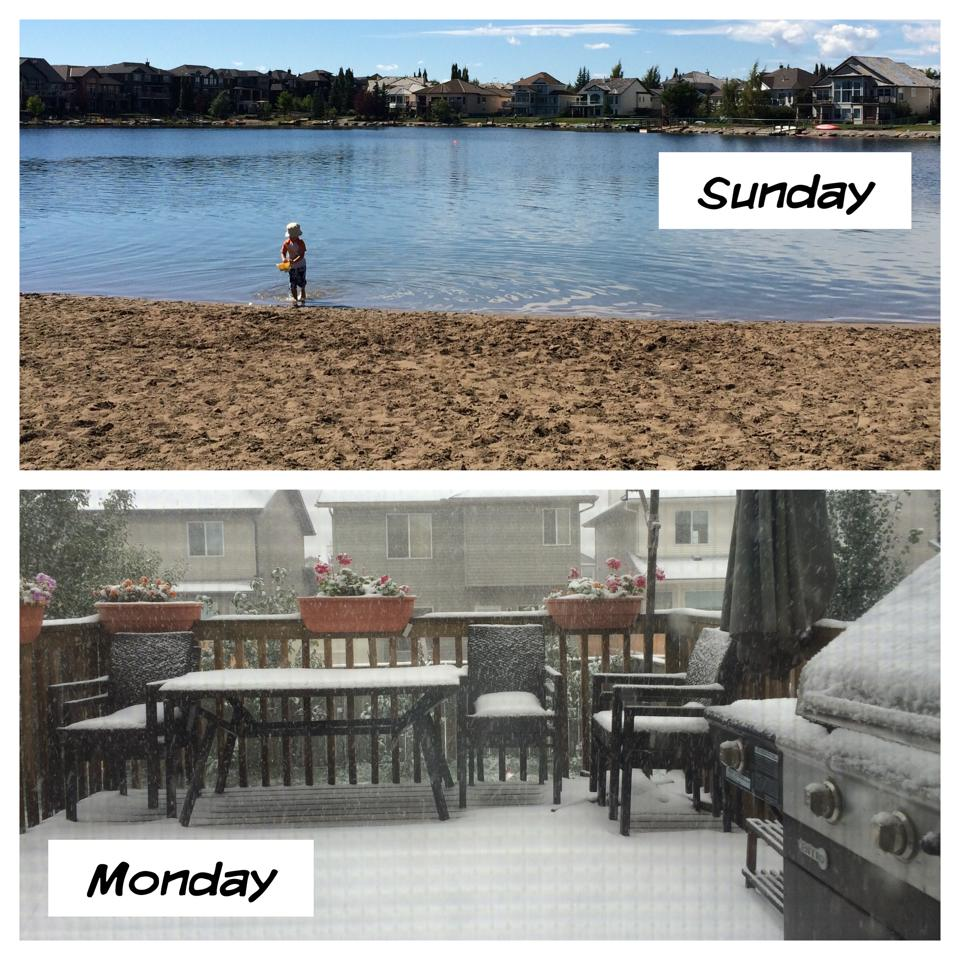 Summer Snow In Calgary
