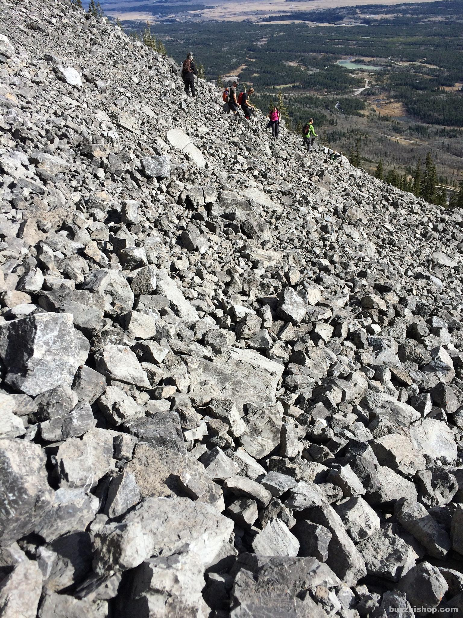 Trying to climb the scree