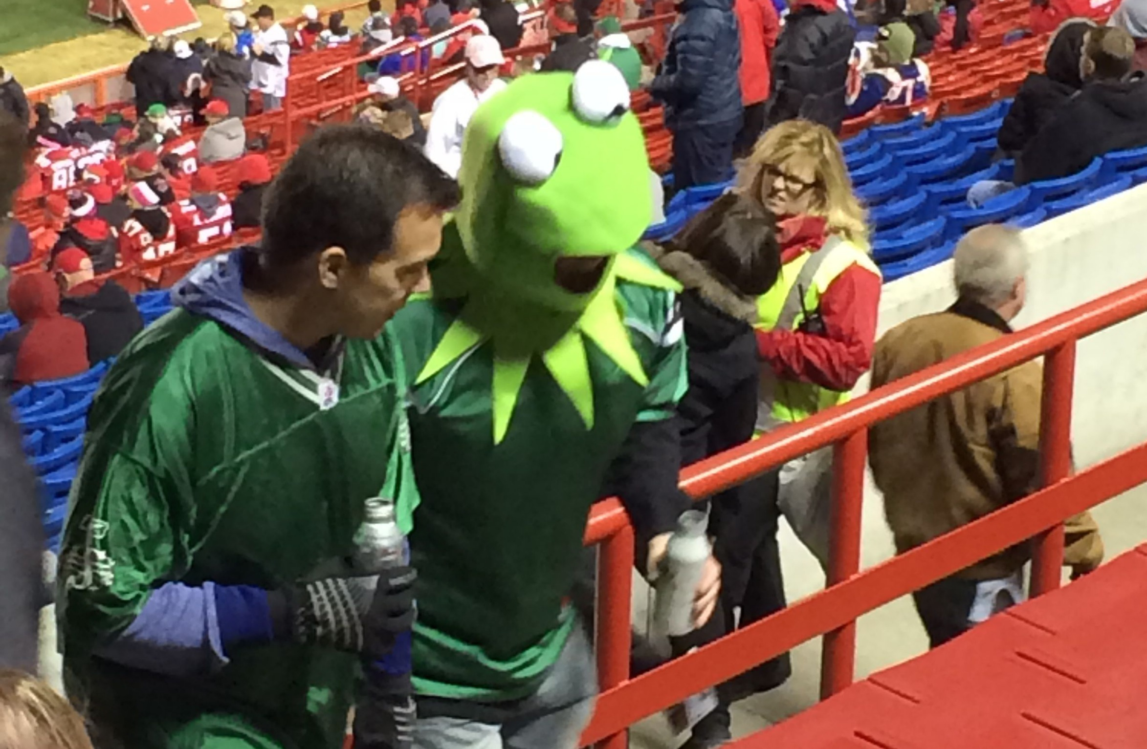 Rider fans dressed like Kermit