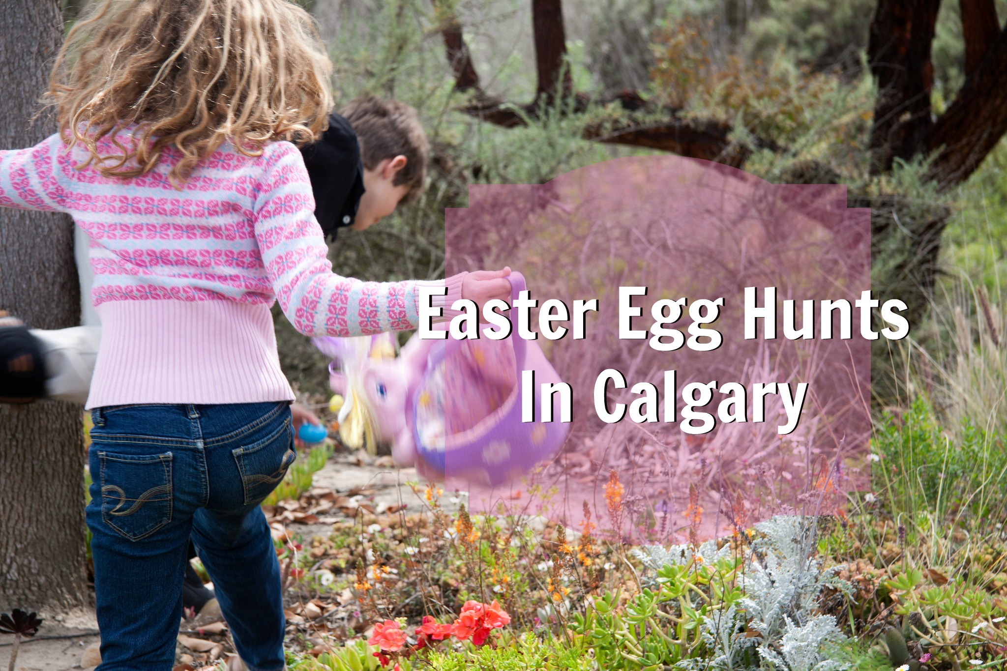 Easter Egg Hunts In Calgary