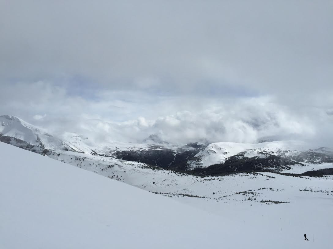 top of sunshine village