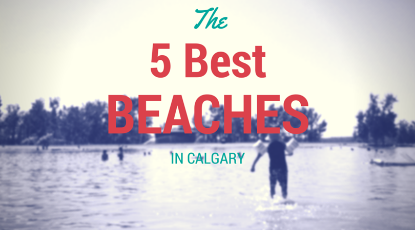 The 5 Best Beaches in Calgary