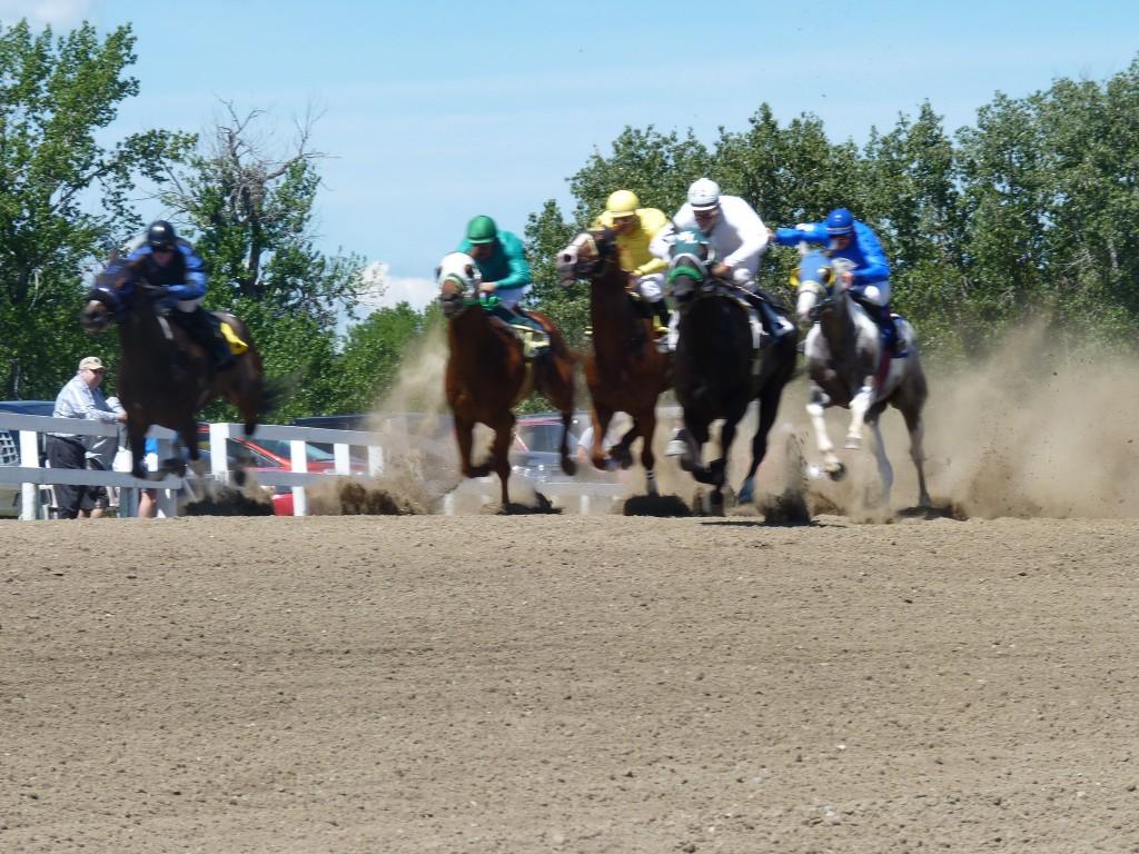 millarville races ponies