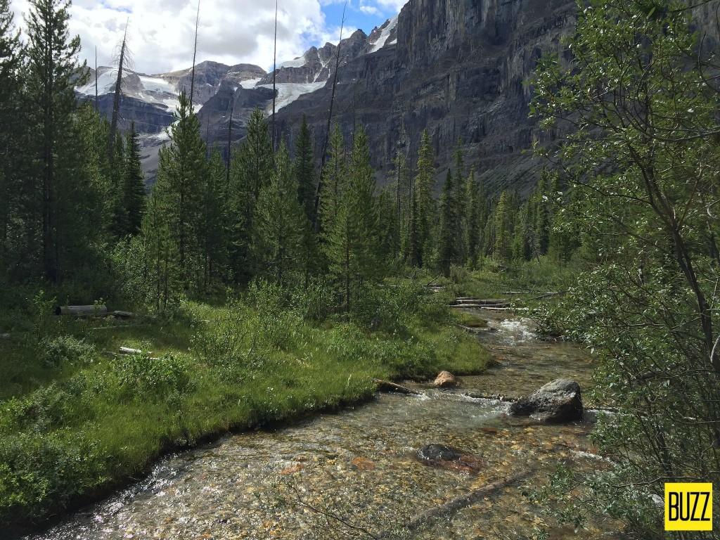 Stanley Creek at Stanley Glacier - Buzz Bishop