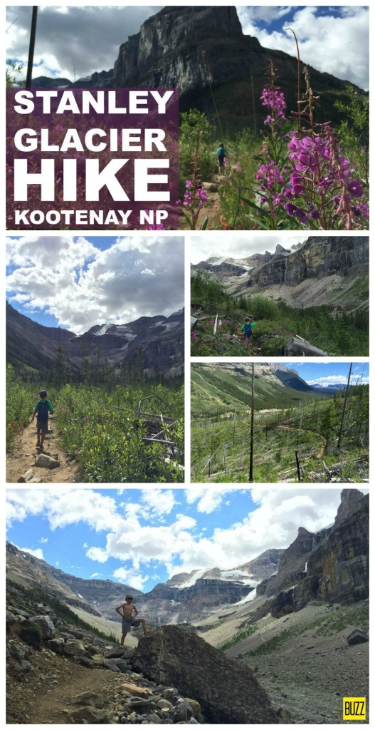 Stanley Glacier Hike in Kootenay National Park