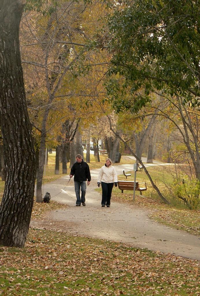 Stanley Park in Calgary
