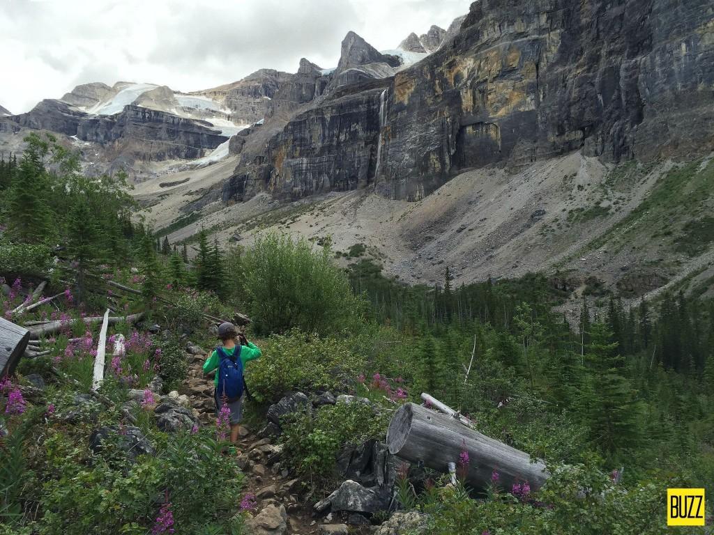 Trail to Stanley Glacier - Buzz Bishop