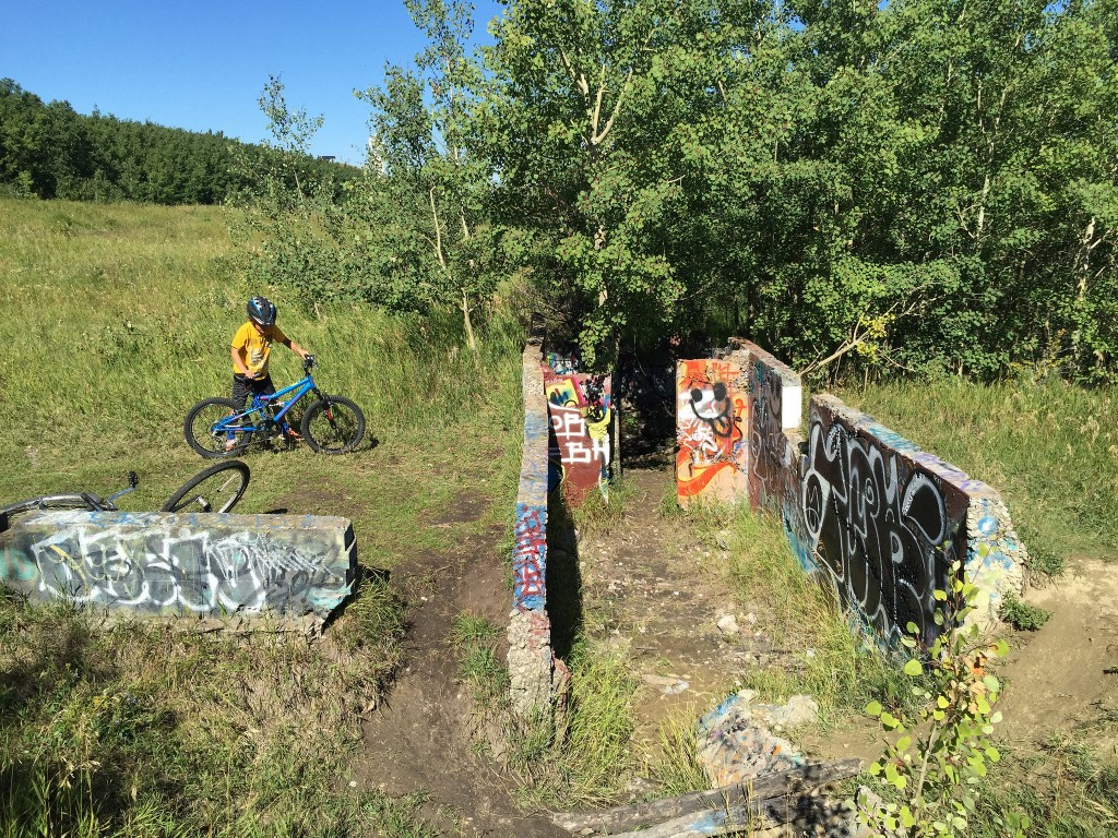 Paskapoo Slopes Foundation