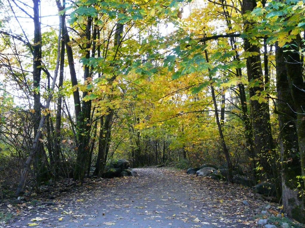 Running trail - #sweatforthis - TBAB