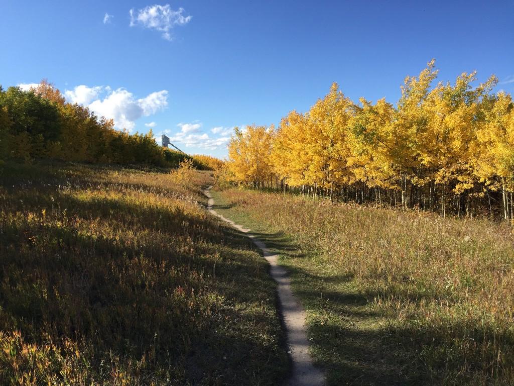 Paskapoo Slopes Calgary - TBAB