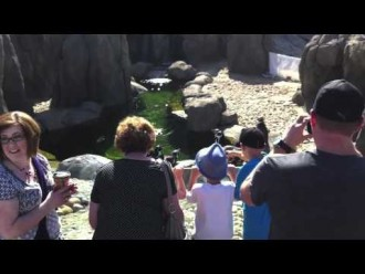 Kids In Calgary: The Calgary Zoo