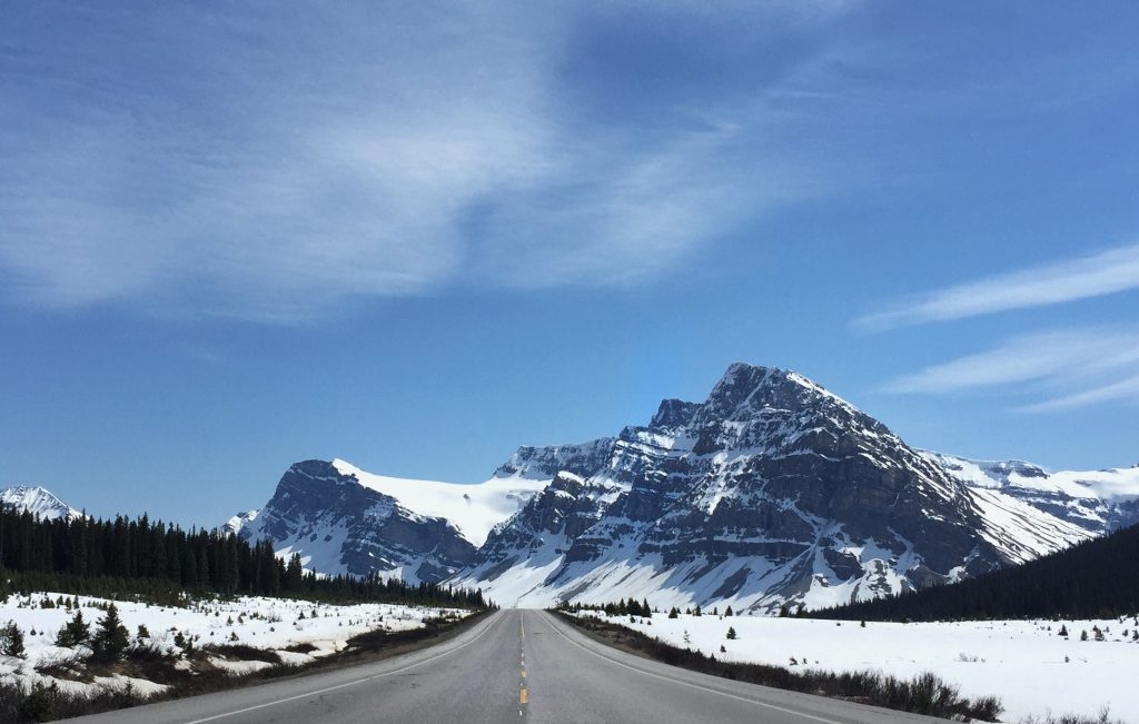 icefield parkway in late spring
