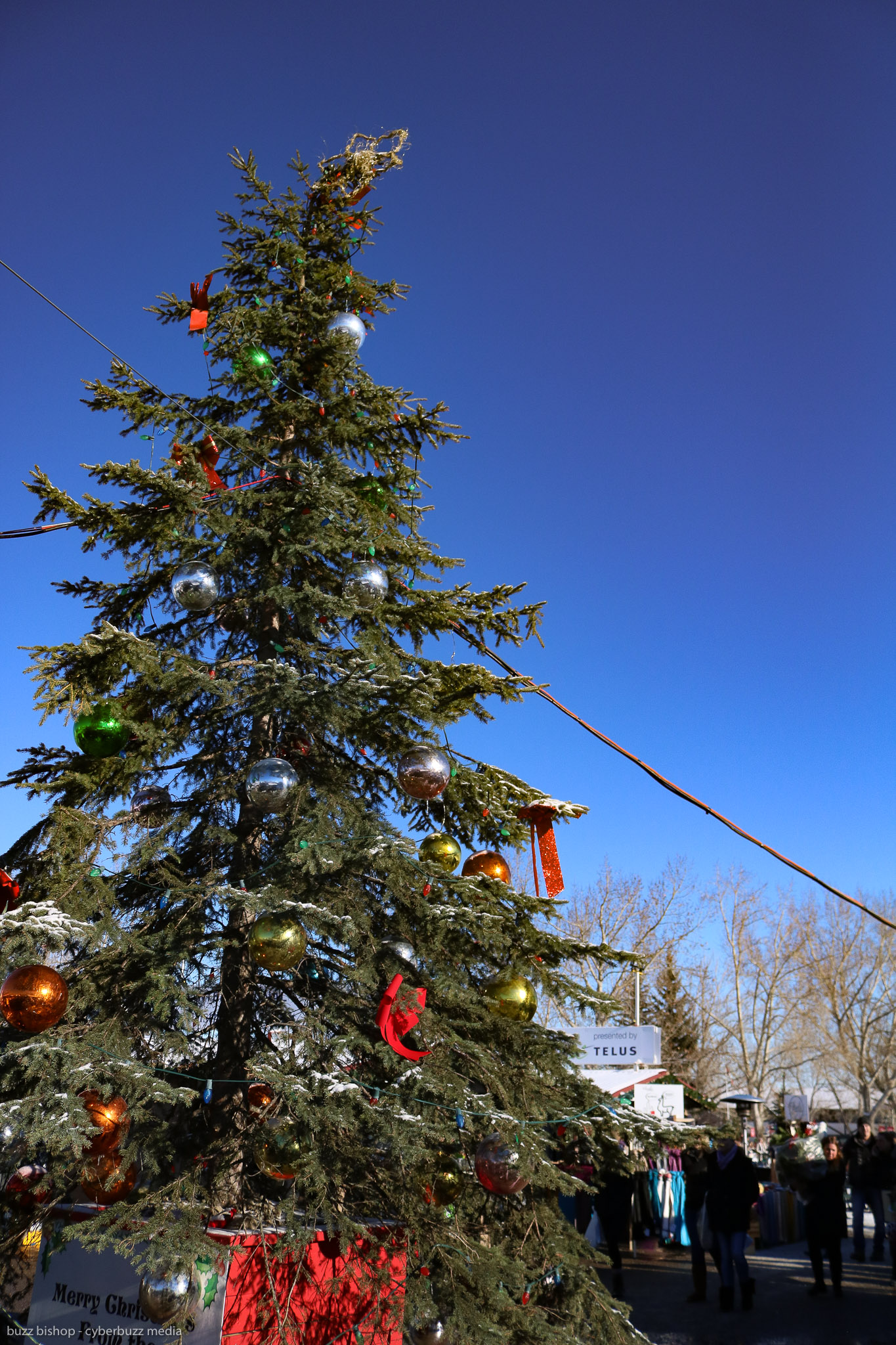 e4b21853c6a What To See At The 2018 Spruce Meadows Christmas Market